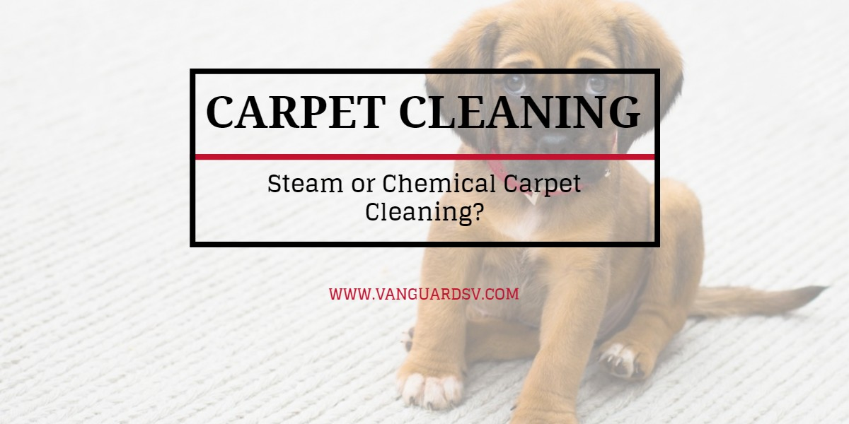 Carpet Cleaning Services Steam Or Chemical Fresno Ca