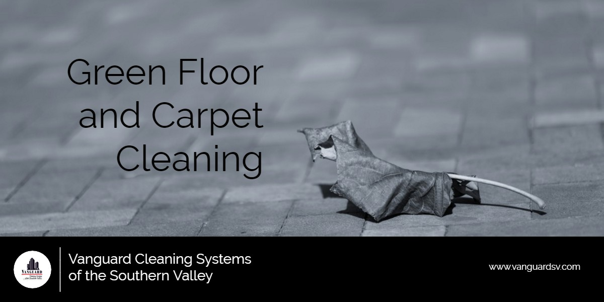 Cleaning Services Green Floor And Carpet Cleaning