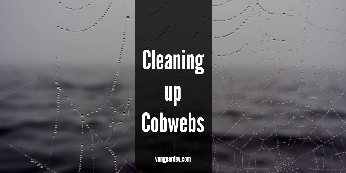 Cleaning Services Up Cobwebs