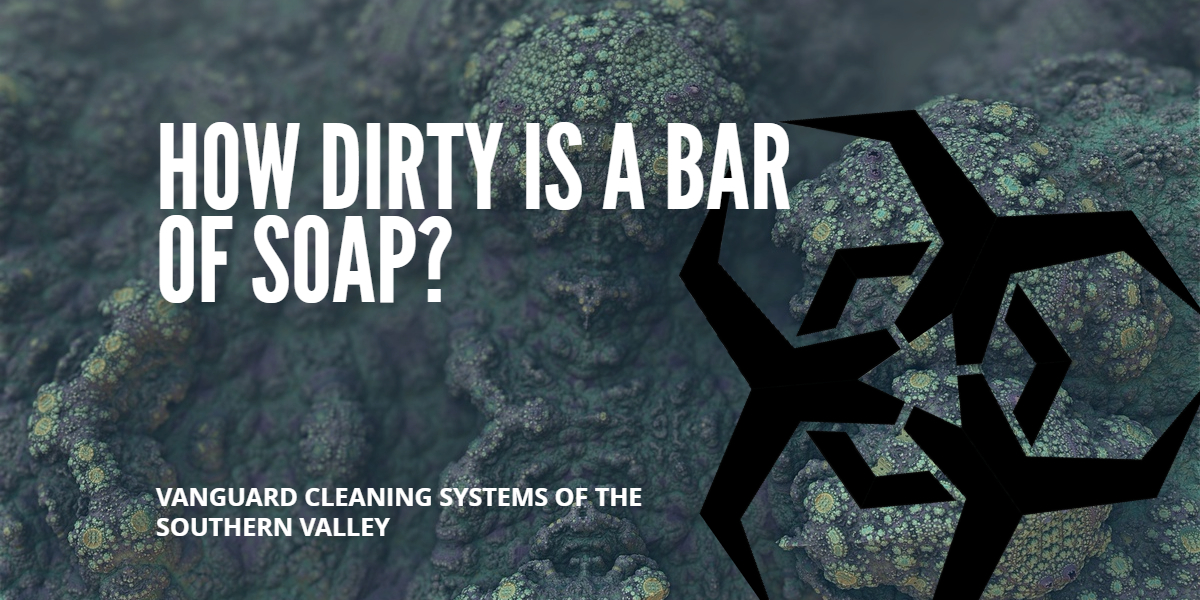 Cleaning Services Questions: How Dirty is a Bar of Soap - Fresno CA