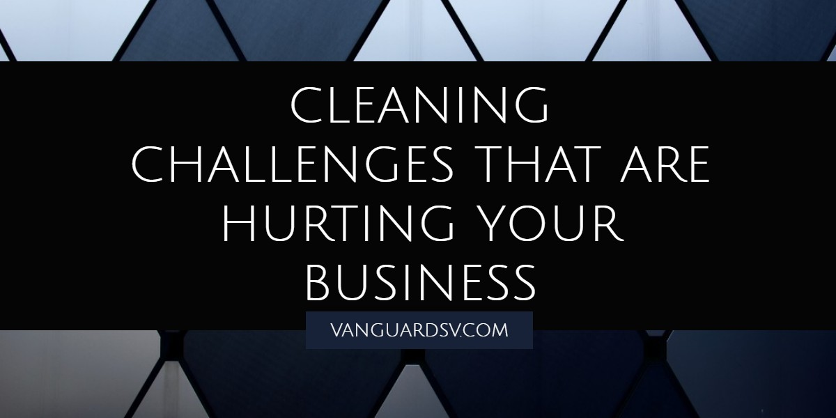 Janitorial Services for Challenges that are Killing your Business - Valencia CA