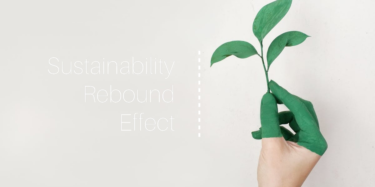 Sustainability Rebound Effect
