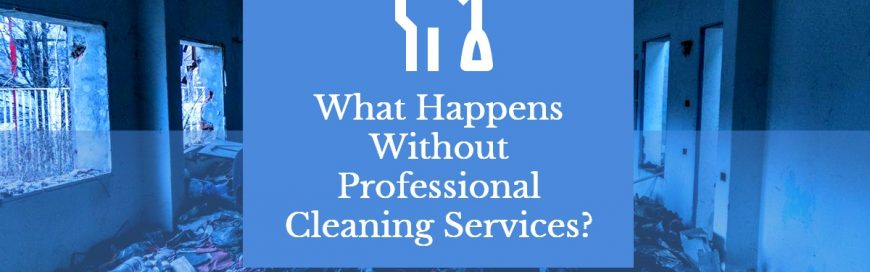 What Happens Without Professional Cleaning Services?