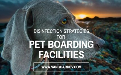 Janitorial Services and Disinfection Strategies for Pet Boarding Facilities