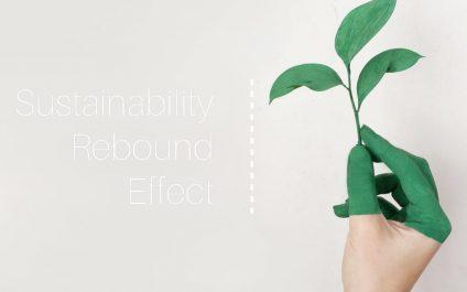 Sustainability Rebound Effect
