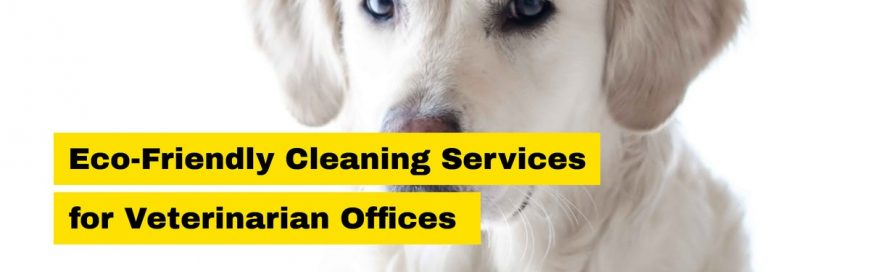 Eco-Friendly Cleaning Services for Veterinarian Offices