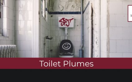 Toilet Plumes