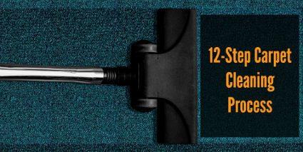 Twelve Step Carpet Cleaning Process