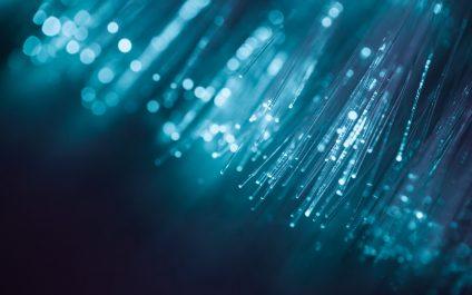 What is a Fiber Optic Backbone Network?