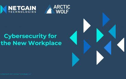 Cybersecurity in the New Workplace Webinar