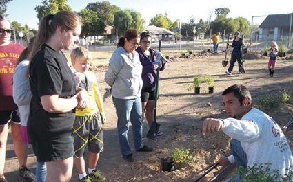 Goodman's Landscape Volunteer Work at Copperwood Elementary