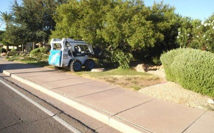 Commercial Landscaping Services in Phoenix, AZ – Before and Afters