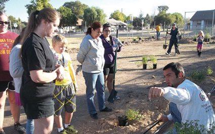 Goodman's Landscape Volunteer Work at Copperwood Elementary