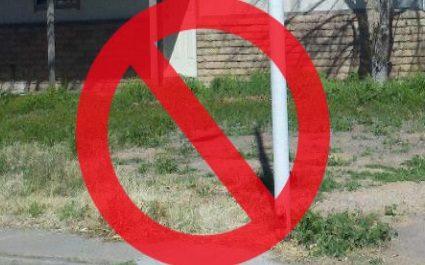 How To Get Rid of Weeds in Phoenix, Arizona