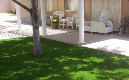 Install Artificial Grass in Your Phoenix, AZ Home's Yard