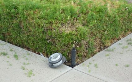 Top 5 Landscape Lighting Issues for Arizona Homeowners