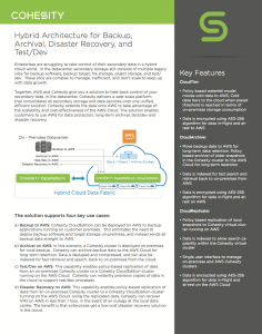 Cohesity and AWS