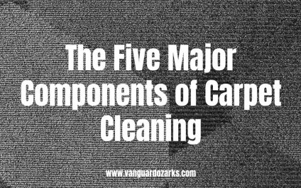 The Five Major Components of Carpet Cleaning