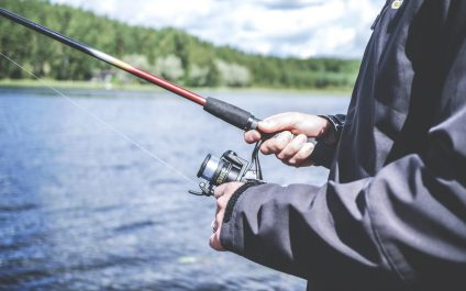 How to Spot a Phishing or Scam Email