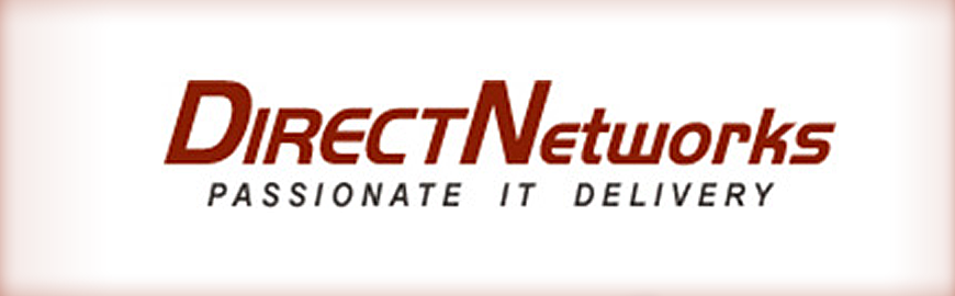 Direct-Networks logo
