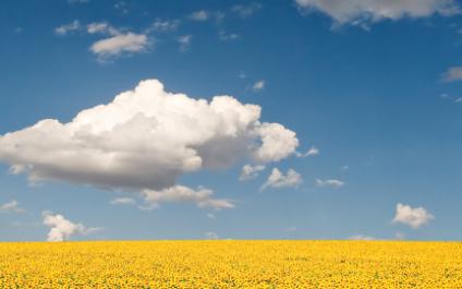 Top 5 Secrets for Effective Cloud Computing