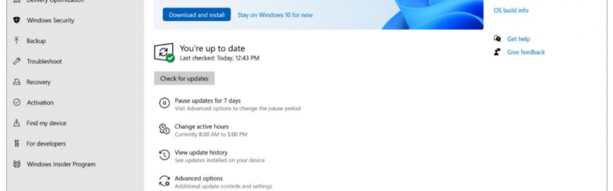 Windows 11 upgrades.. DON'T! Not yet anyway