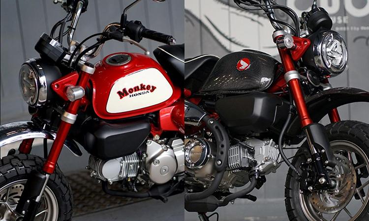 monkey-custom-tn_1584339184