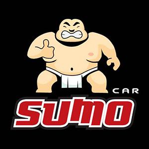 05_Sumo-Car