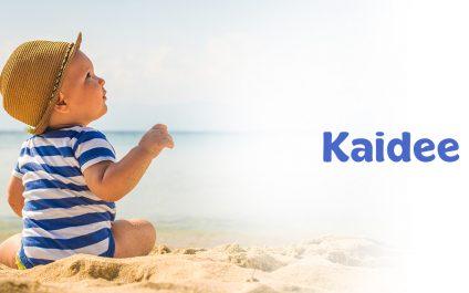 พาลูกเที่ยวทะเลช่วยให้เด็กฉลาดได้ อยากให้ลูกมีพัฒนาการที่ดีต้องพาลูกเที่ยว