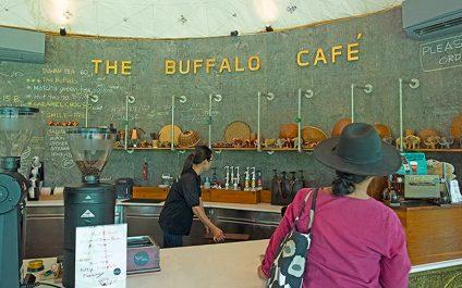 The Buffalo Amphawa คาเฟ่ ร้านอาหาร โรงแรมริมน้ำอัมพวา