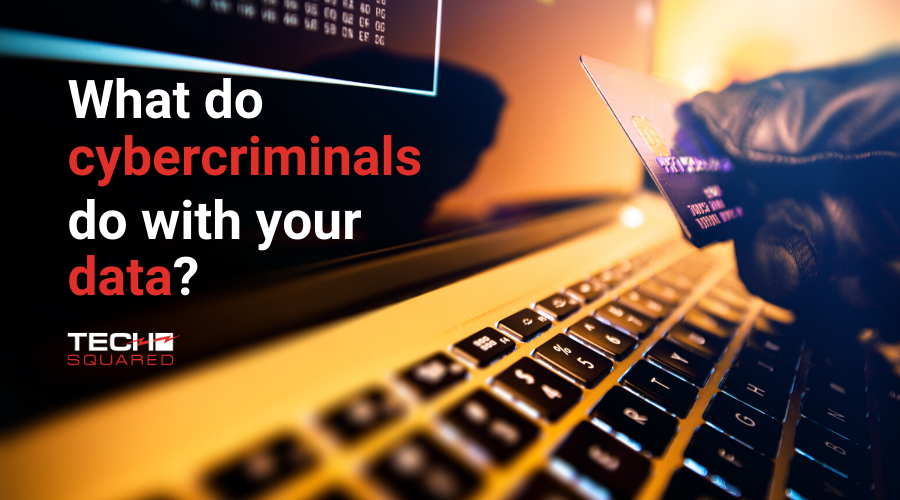 what do cybercriminals do with stolen data PII
