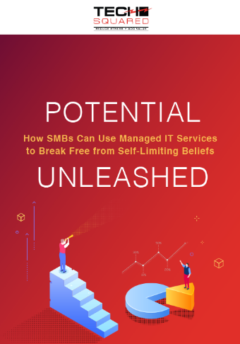 LD-TechSquared-Potential-How-SMBsCanUse-ManagedITServices-eBook-Cover-1