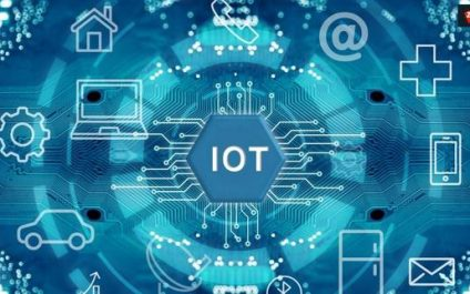 Everything You Should Know About IoT
