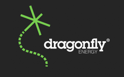 Partnering with an MSP can Encourage Growth [Dragonfly Energy's Story]
