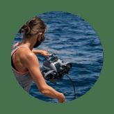 img-shark-tagging