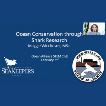 Monthly-Beach-Cleanup-2-2-2020-cover