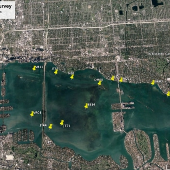 img-cover-Water-Sampling-in-Biscayne-Bay-with-RSMAS