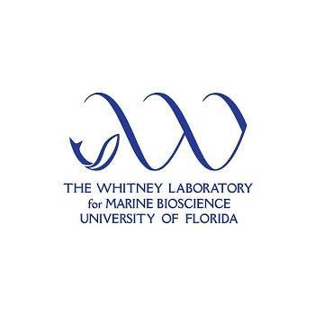 Whitney Lab for Marine BioScience