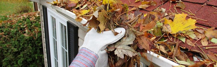 Get your roof ready for autumn
