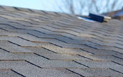 Guide for new startups: Types of commercial roofing