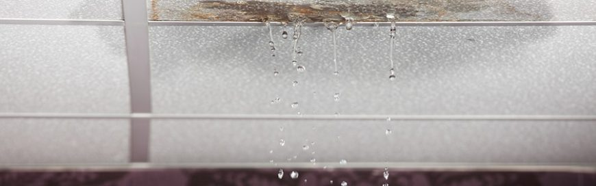 Roof leaks can do more damage to your business than you think