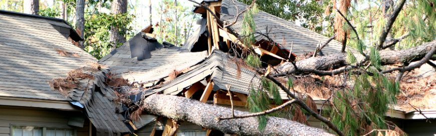 How to protect the roof of your commercial property from natural disasters
