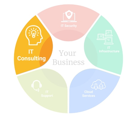 img-pie-chart-IT-Consulting