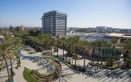 The Best IT Services In Anaheim