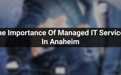 The Importance Of Managed IT Services In Anaheim