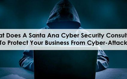 What Does A Santa Ana Cyber Security Consultant Do To Protect Your Business From Cyber-Attacks?