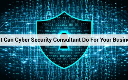 What Can Cyber Security Consultant Do For Your Business?