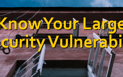 I Know Your Largest Security Vulnerability