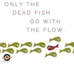 Don't Be A Dead Fish – Swim Against The Current