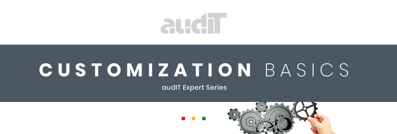audit-expert-customization